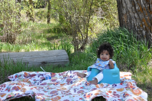 Picnic at Hot Sulpher Springs